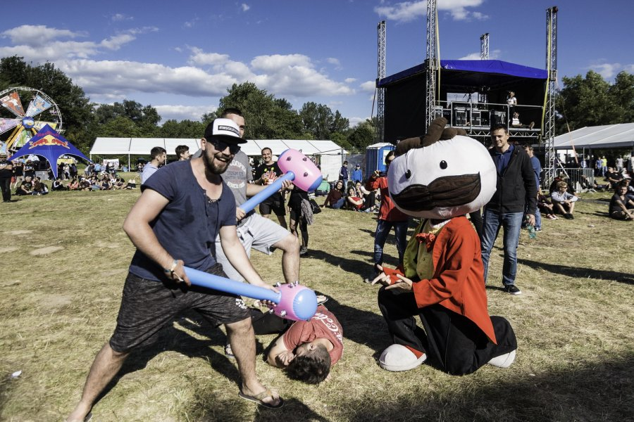 Festival Topfest oslávil 15-te narodeniny návratom na Zelenú vodu
