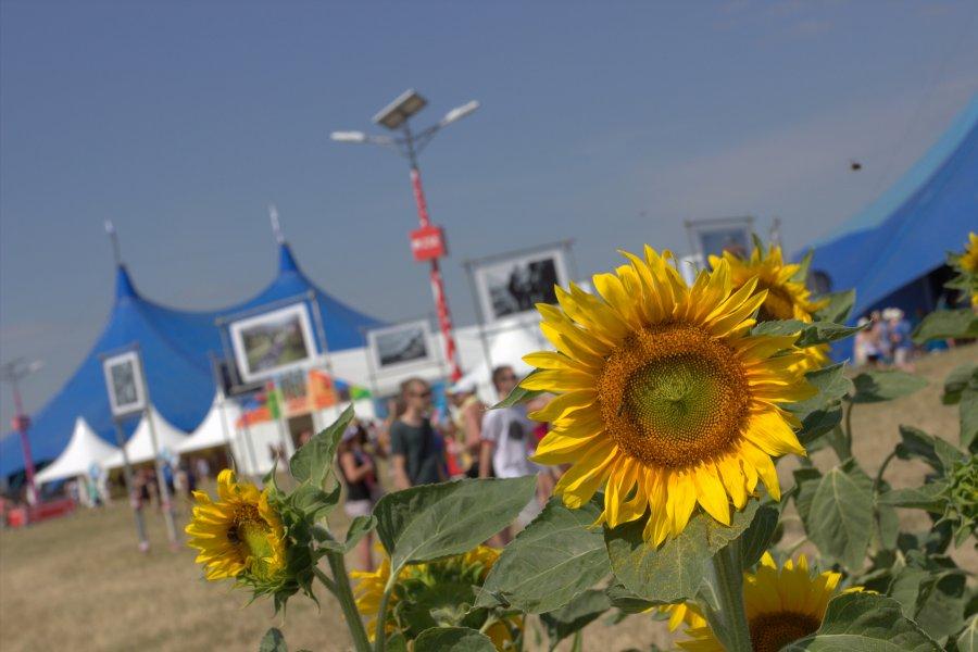 Na festival Pohoda príde britský talent Birdy, ale aj Ylvis, Slaves, Lasica a ďalší
