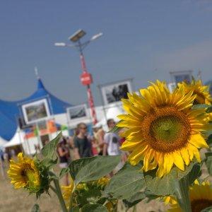 Festival Pohoda 2019 je týždeň pred začiatkom vypredaný