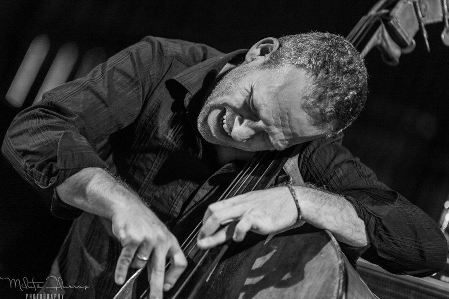 """One Day Jazz Fest 2014 sa vracia, na Slovensko prinesie """"kráľa basákov"""" Avishaia Cohena"""