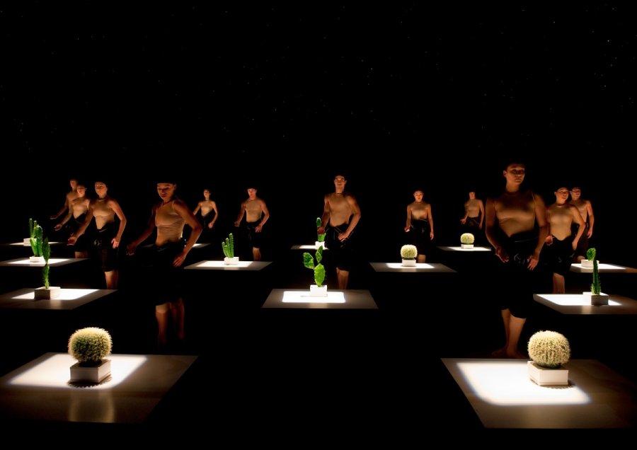 Svetový tanečný súbor Nederlands Dans Theater zavíta na Pohodu s dvomi predstaveniami